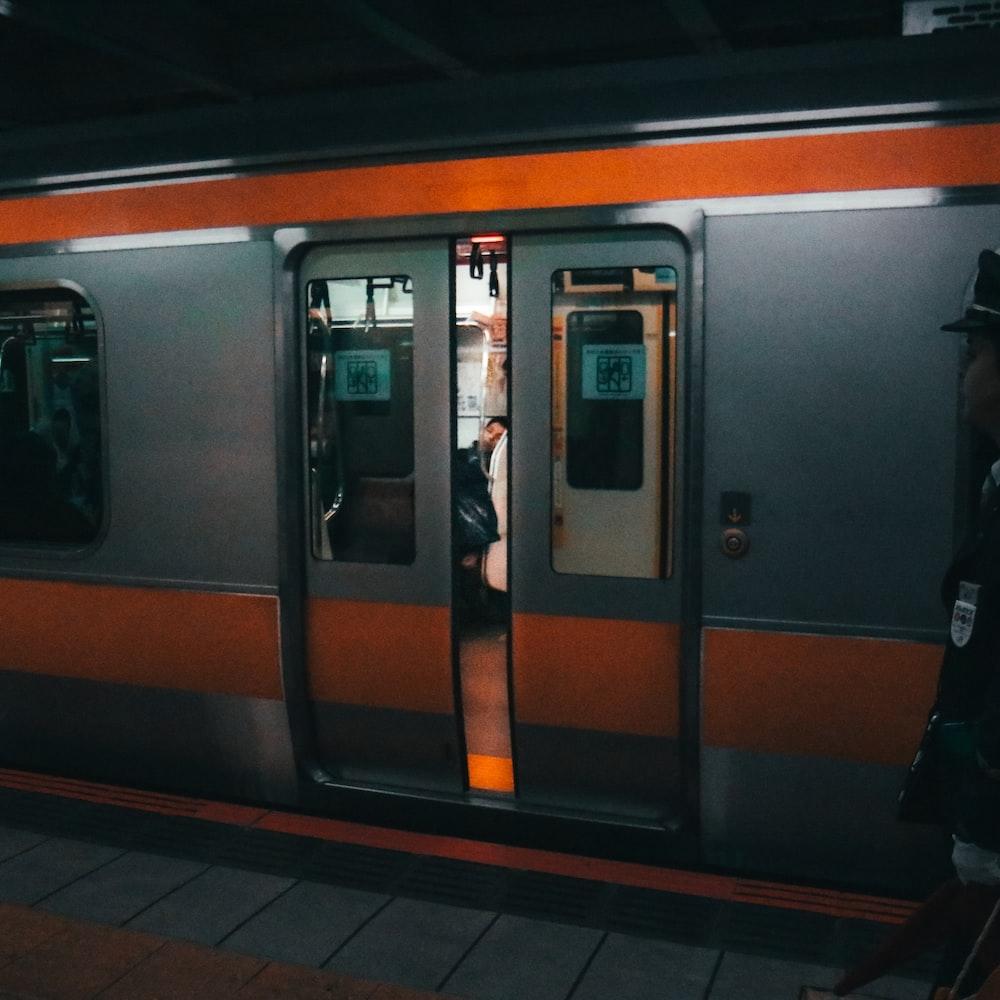gray and brown train door