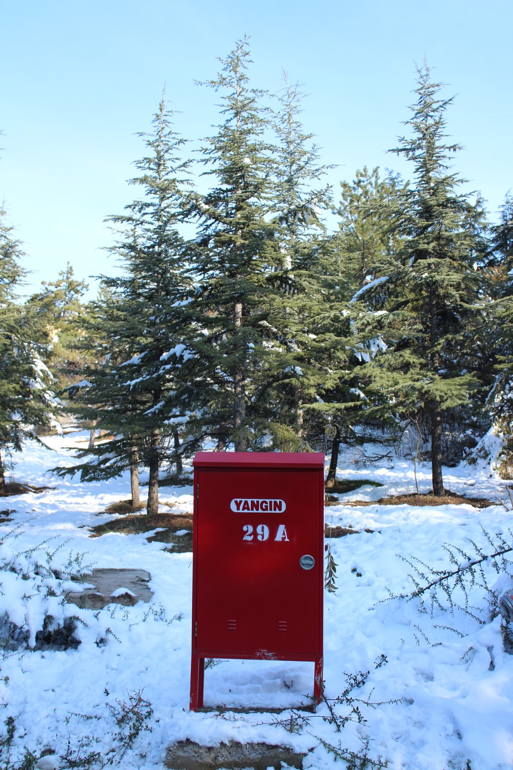 red mail box near green trees during daytime