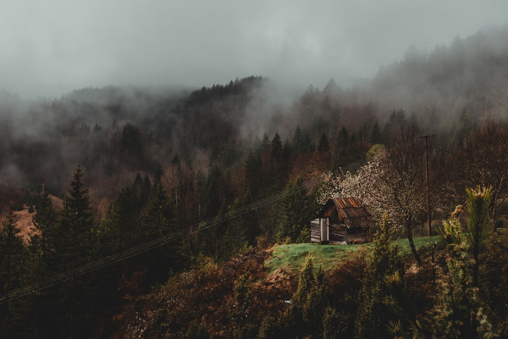 brown wooden house on top of hill