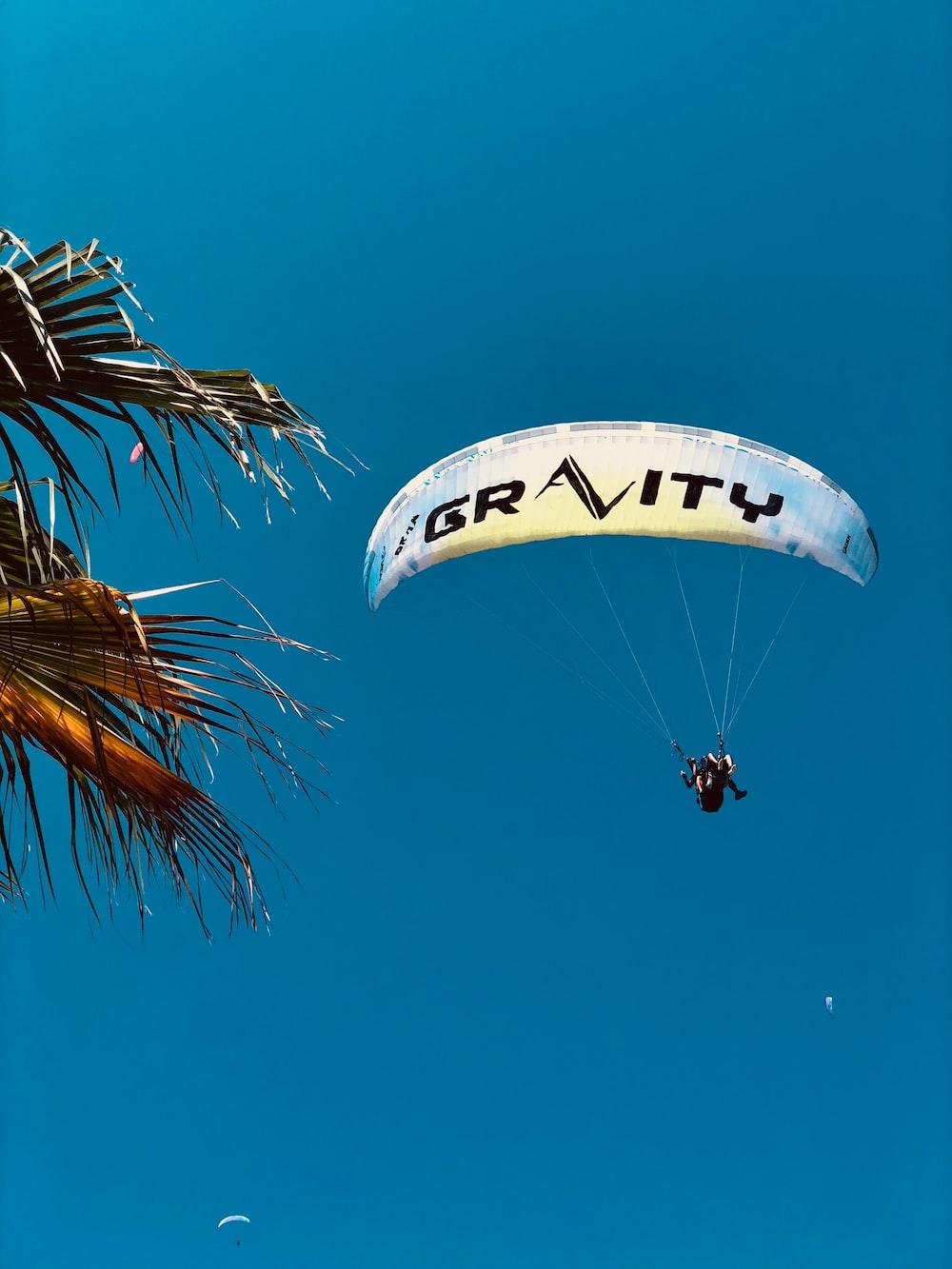 people riding parachute during daytime