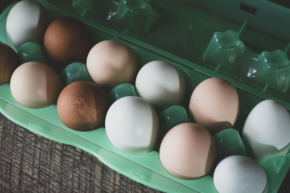 white egg on green plastic container