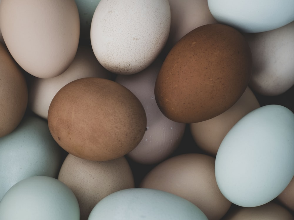 brown egg on white surface