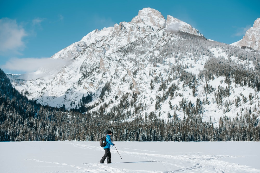 person in blue jacket and black pants walking on snow covered ground during daytime