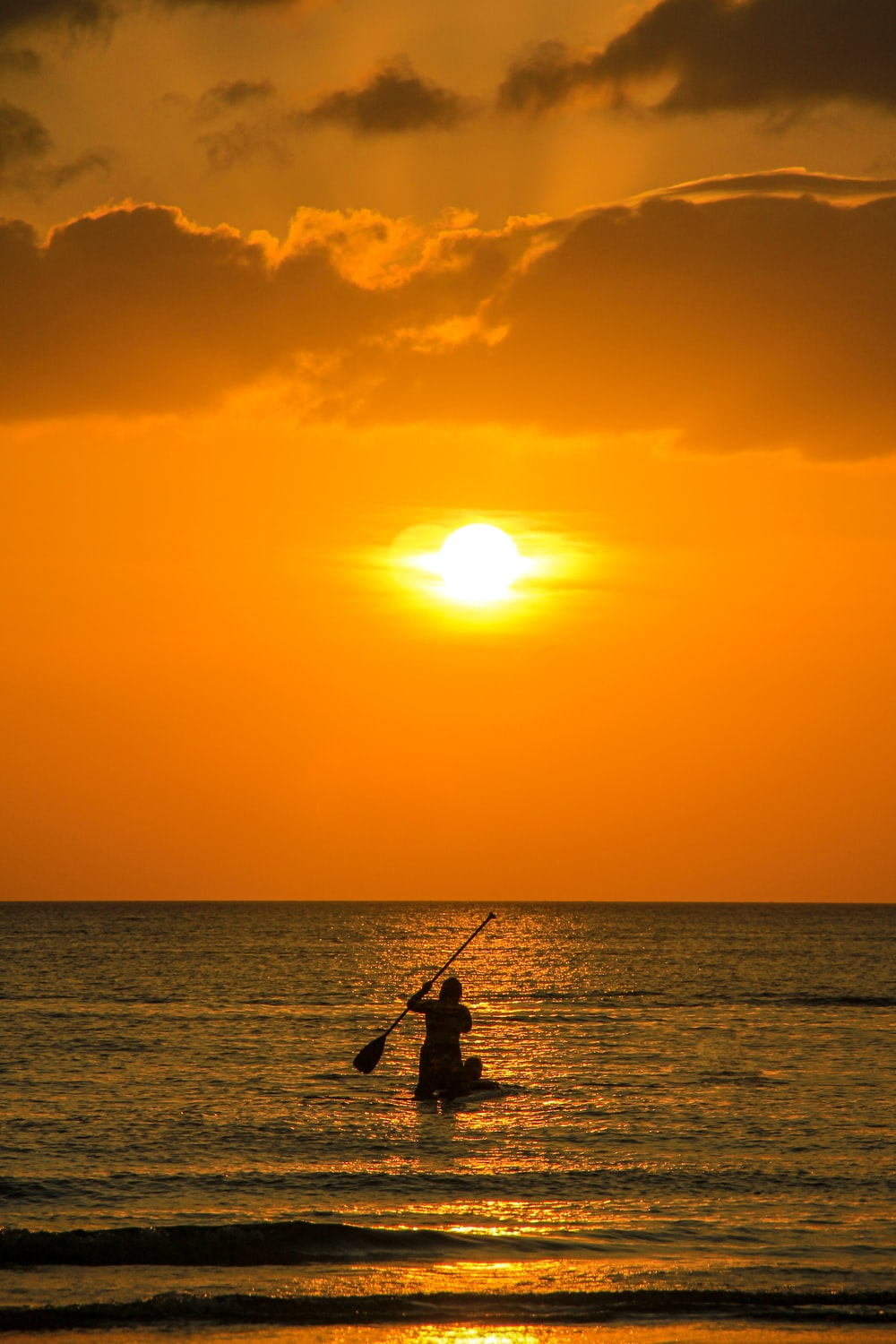 silhouette of man fishing during sunset