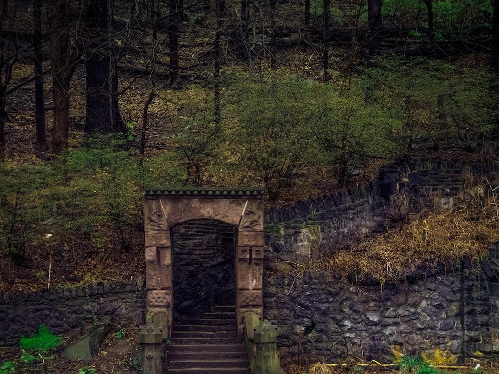 brown wooden bridge in the woods