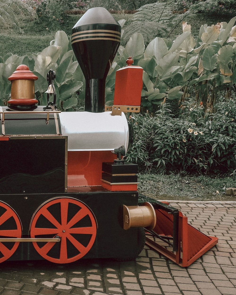 red and black train on rail tracks