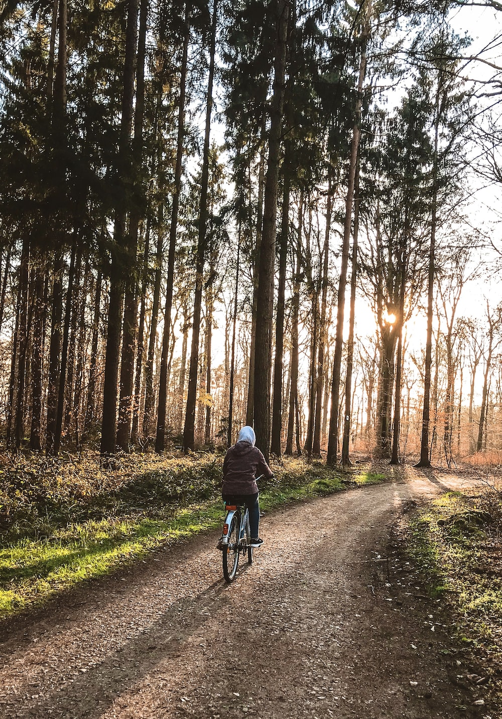 man in blue jacket riding bicycle on pathway between trees during daytime