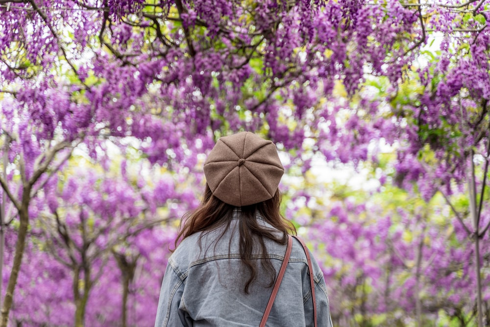 woman in gray hoodie standing near purple flowers during daytime