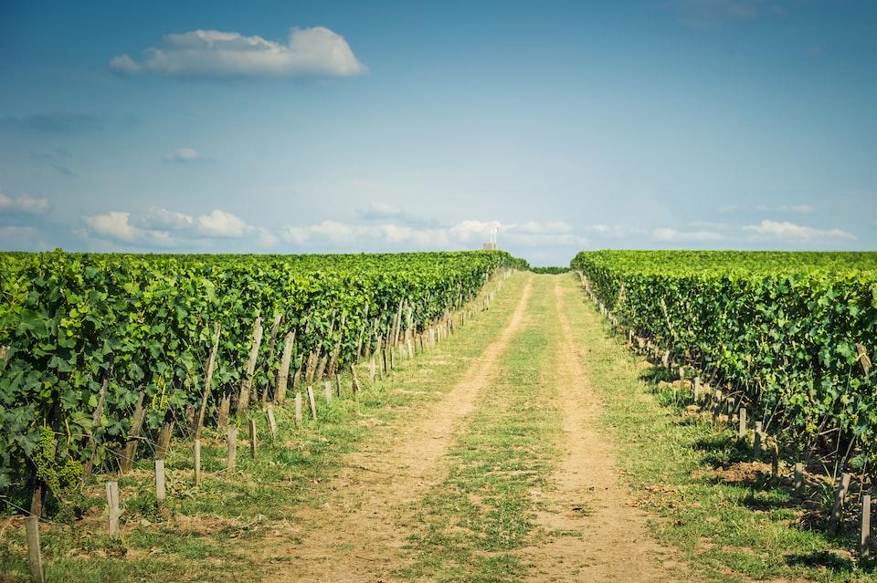 Gorgeous Sagaponack farm on 3 acres seeks $12.5M