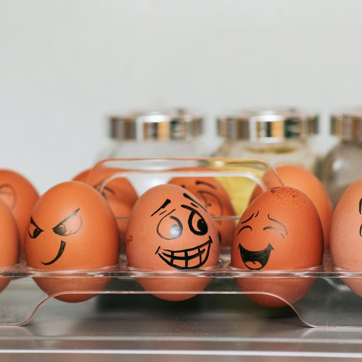 huevos, nevera, orange and white egg on stainless steel rack