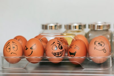 orange and white egg on stainless steel rack emotion teams background