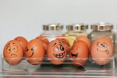 orange and white egg on stainless steel rack emotion zoom background