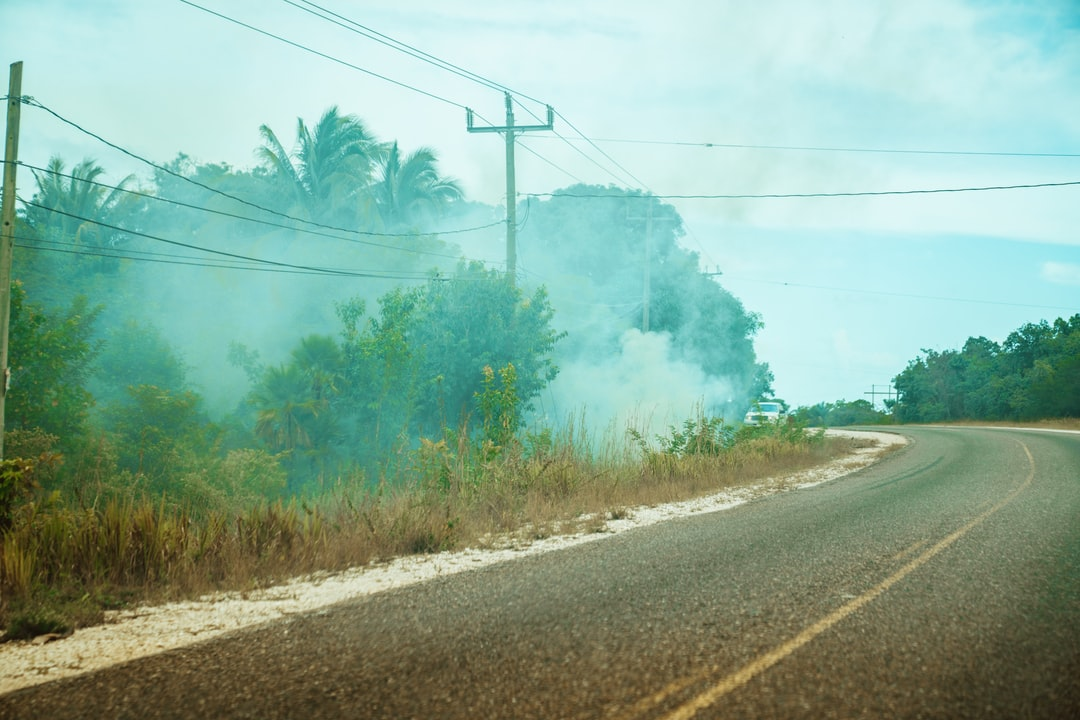 Brush fires on the side of the road is a common sight in Belize.