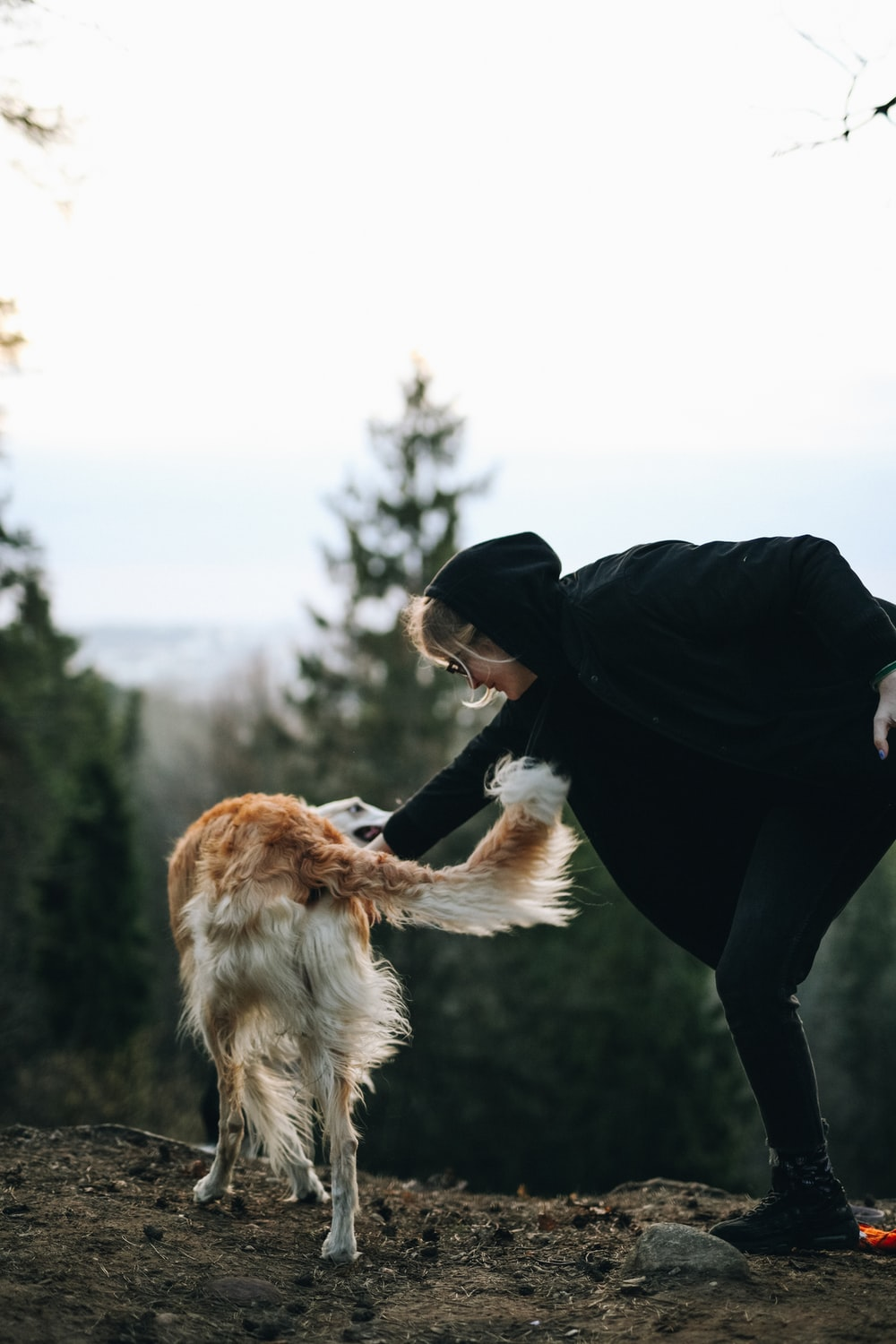 woman in black jacket and black pants holding brown long coated dog