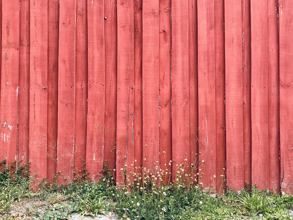 red wooden fence on green grass