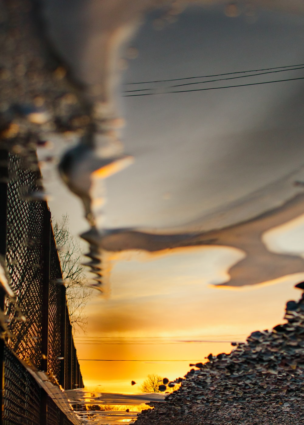 black metal fence near body of water during sunset