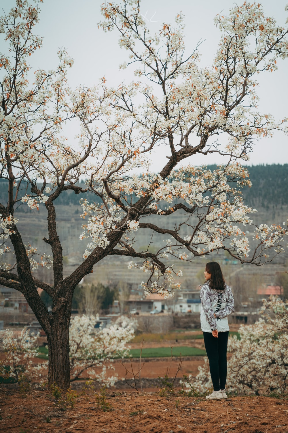 woman in white long sleeve shirt standing beside brown tree during daytime