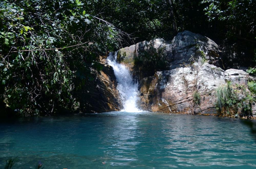 waterfalls near green trees during daytime