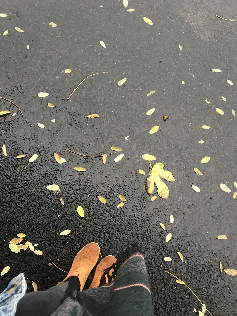 person in brown leather shoes standing on black asphalt road with yellow leaves