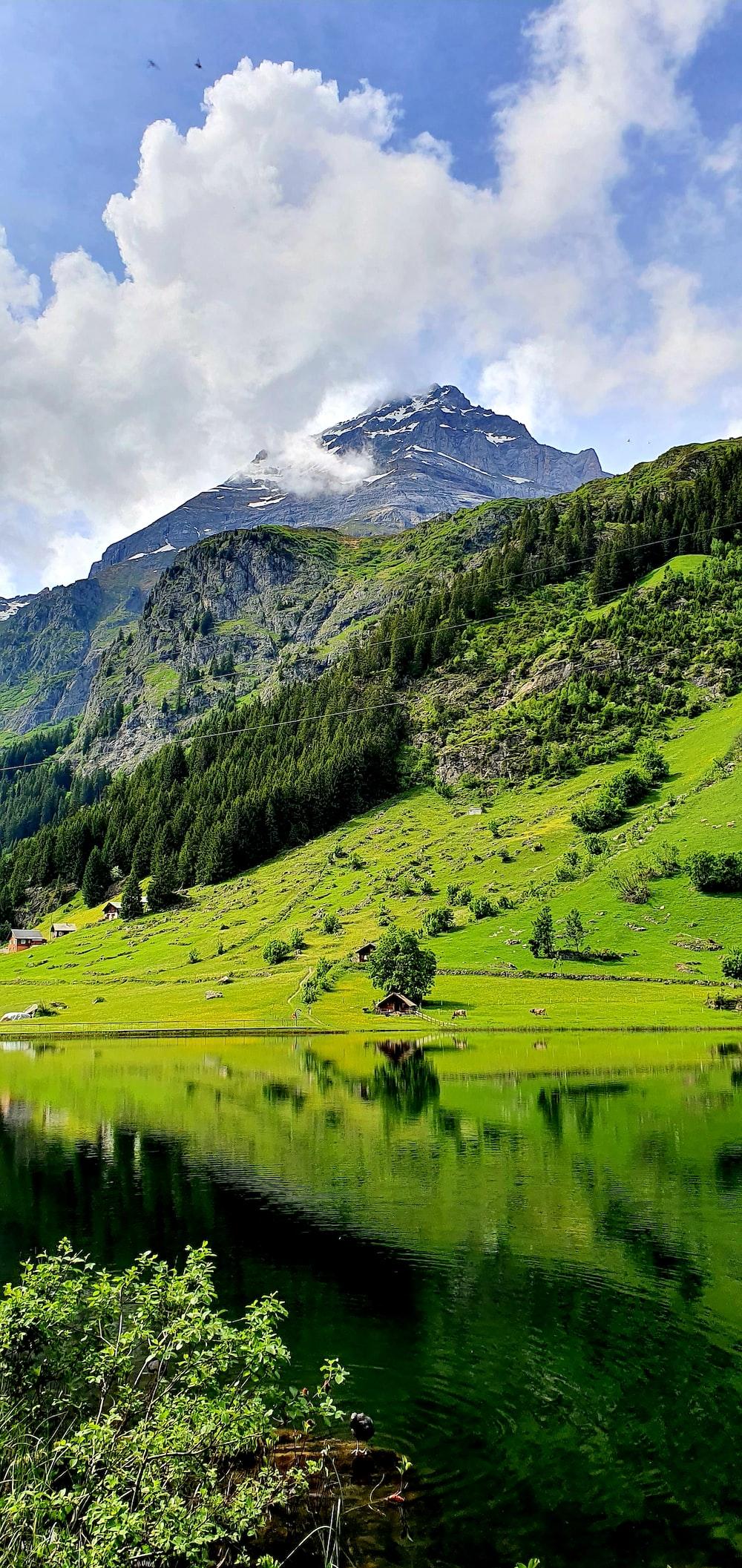 green grass field near lake and mountain