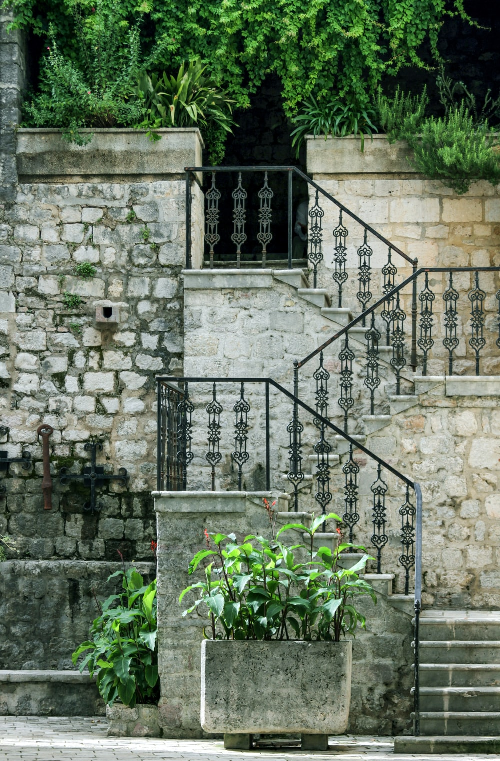 green plants on gray concrete staircase