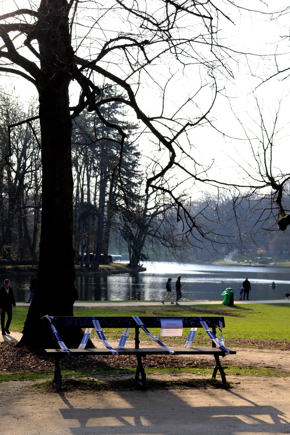 people standing near lake surrounded by trees during daytime
