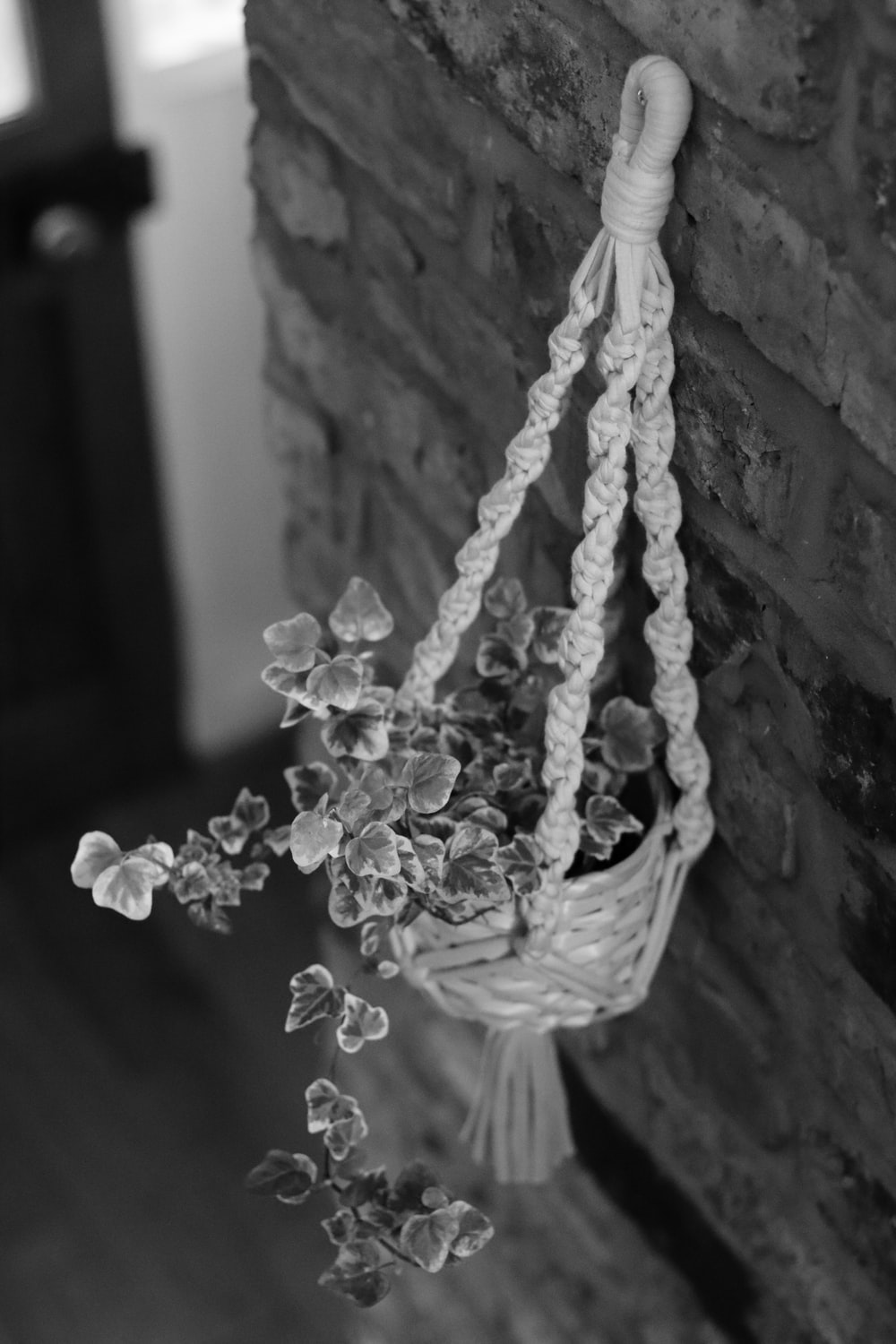 grayscale photo of white flowers in basket