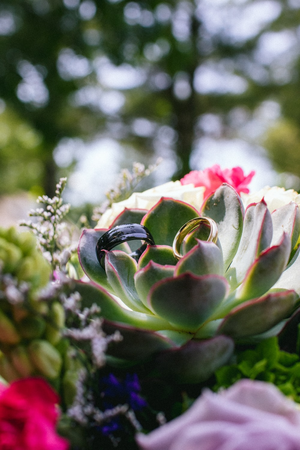 green and pink flower bud in tilt shift lens