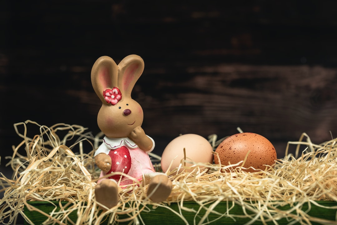 Toy Easter bunny on hey straw nest with organic brown chicken eggs in front of a wooden wall with copy space and room for text. Easter time.