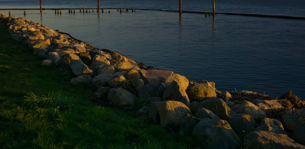 brown rocks on green grass near body of water during daytime