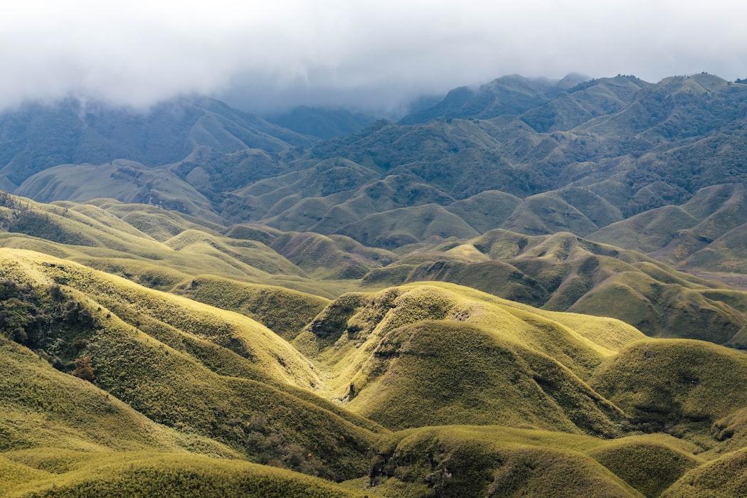grasslands of Dzukou valley in Nagaland