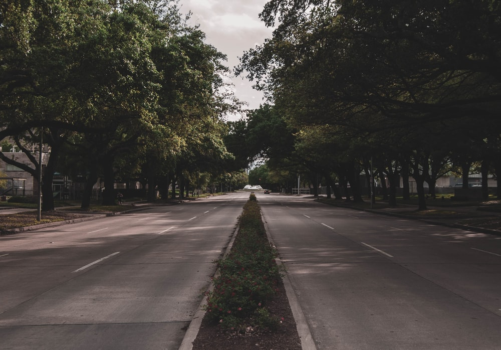 gray concrete road between green trees under white clouds during daytime
