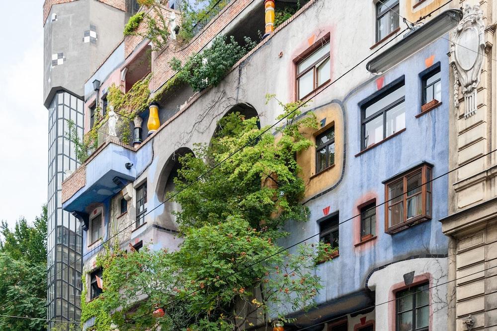 green plants on brown concrete building