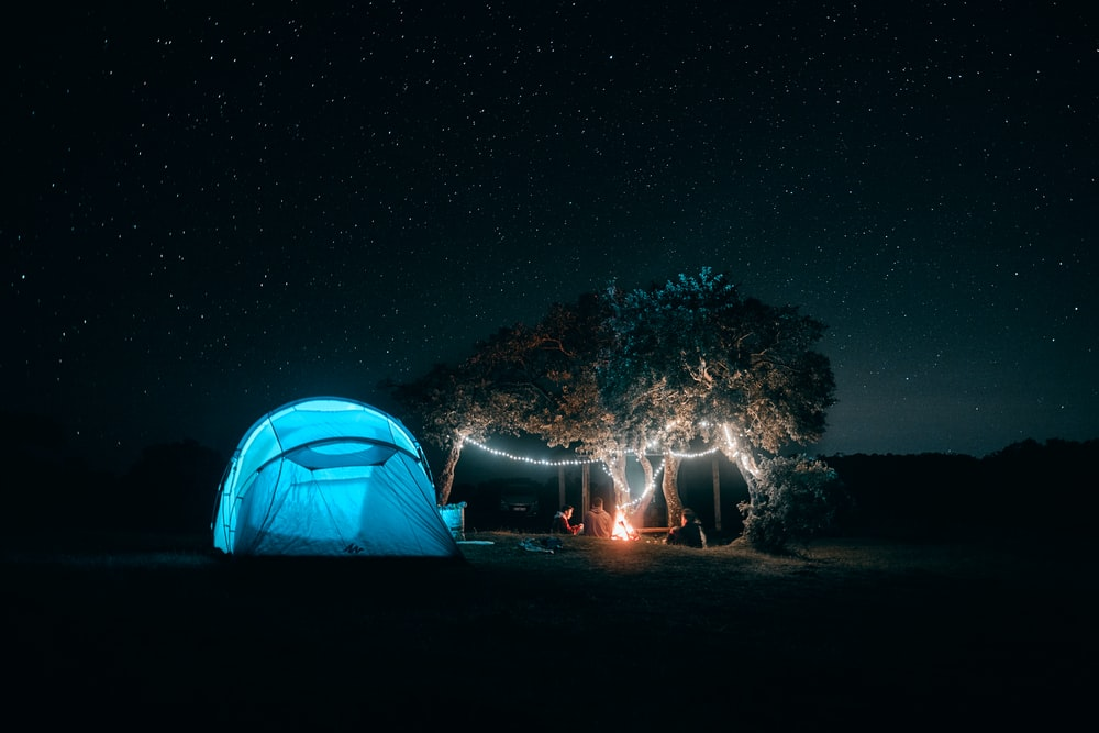 white dome tent near green trees during night time