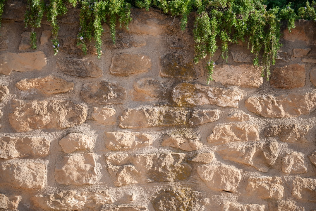 Stone wall with rosemary in Rioja, Spain.