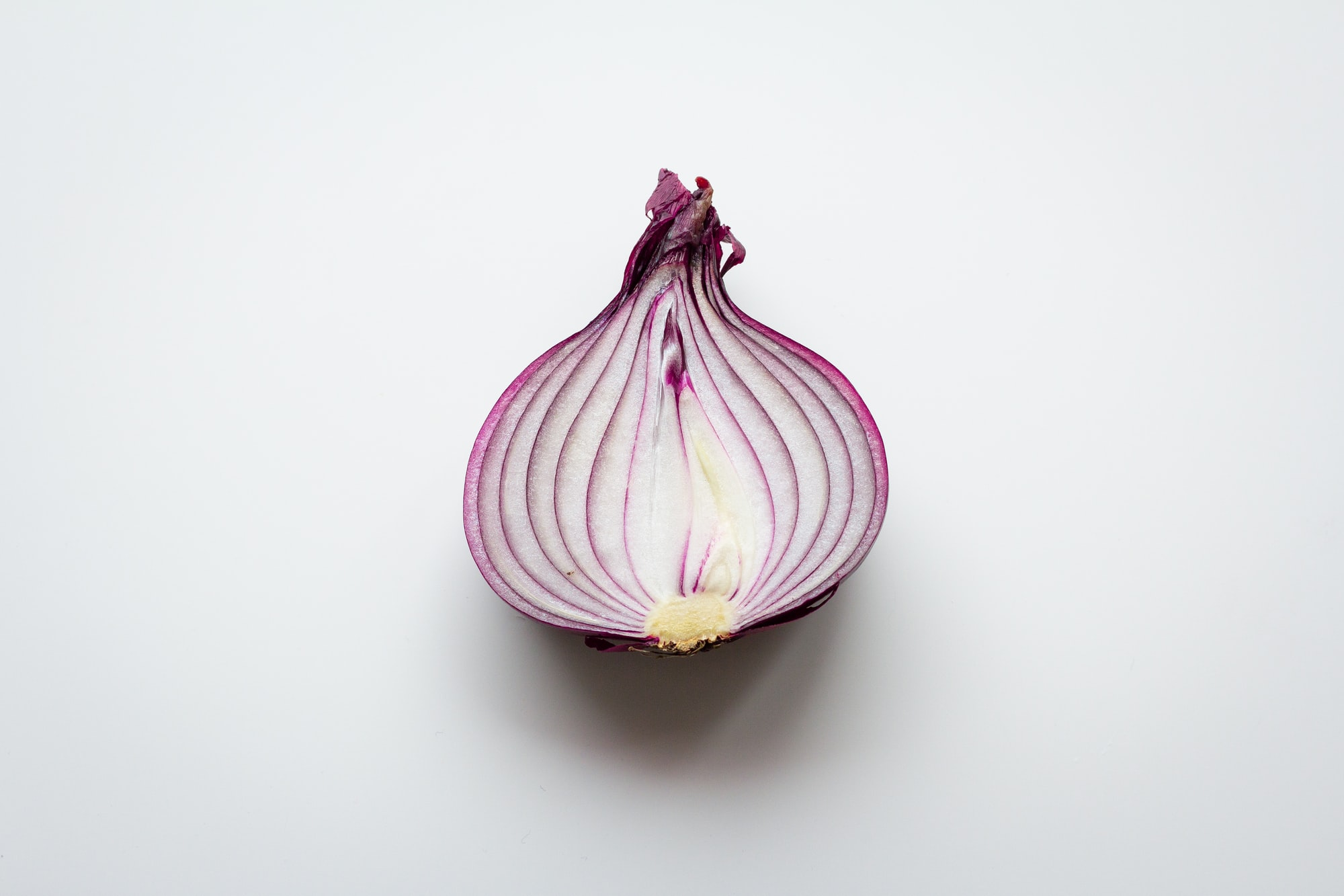 Half of a red onion on a white background