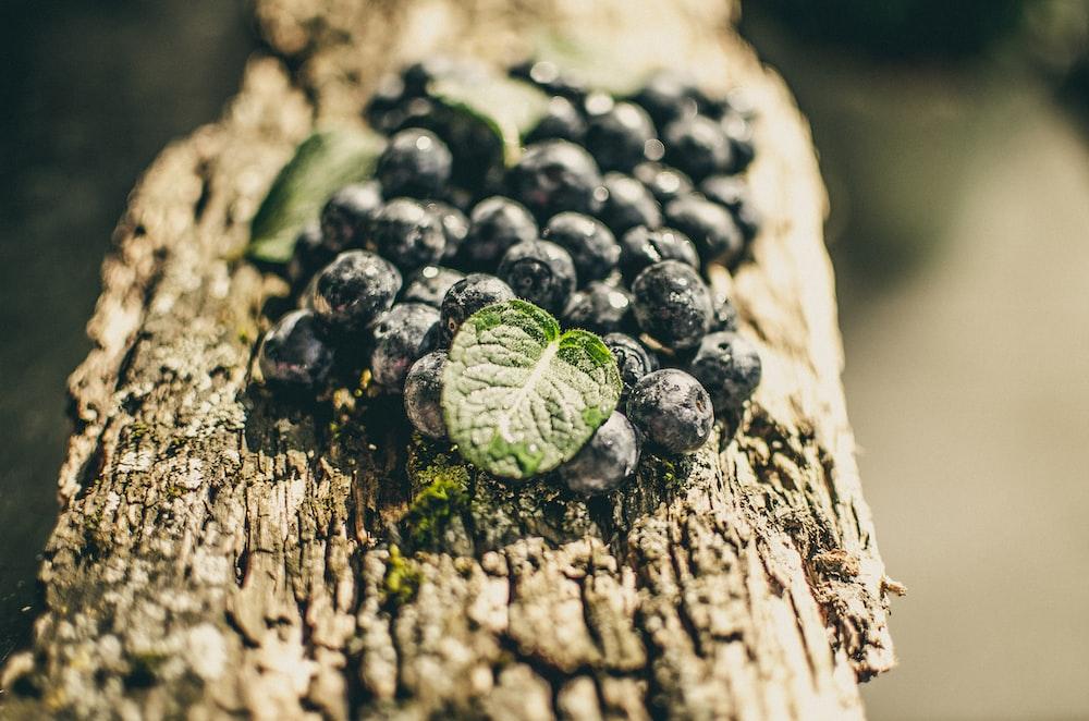 black round fruits on brown wood