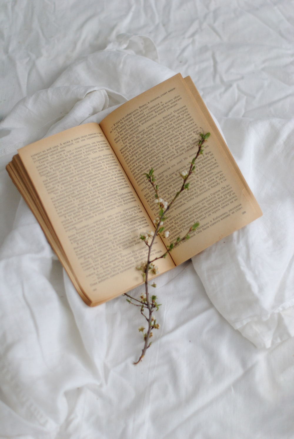green plant on book page