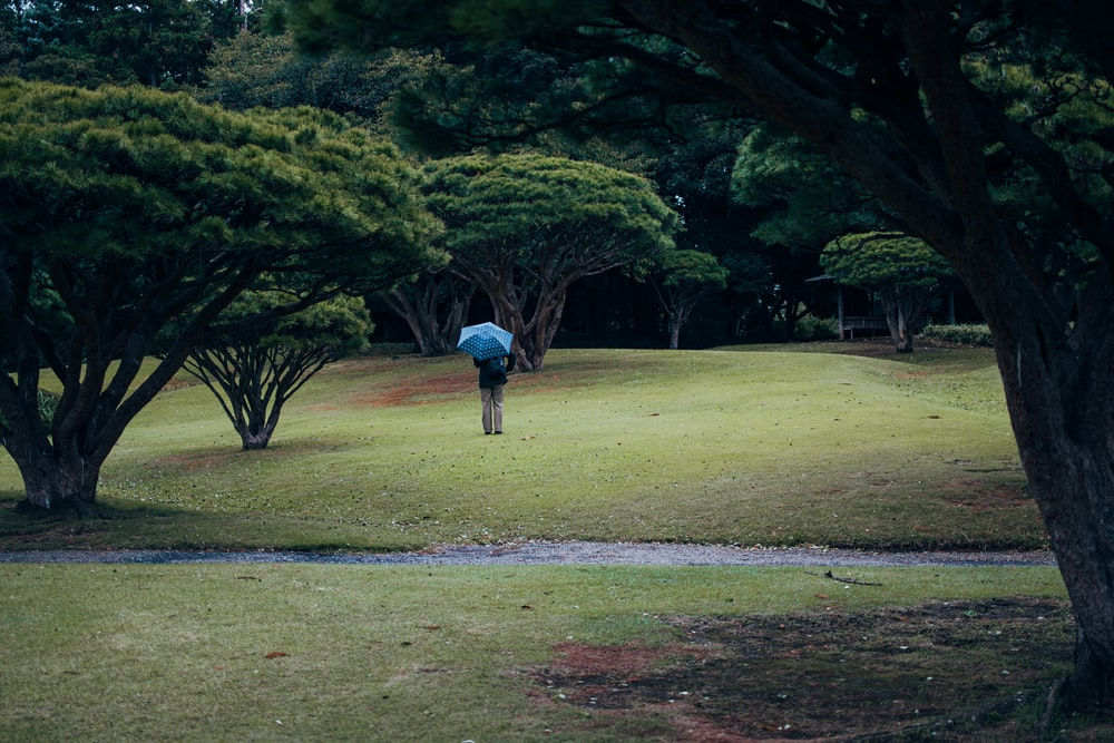 person in blue jacket walking on green grass field during daytime