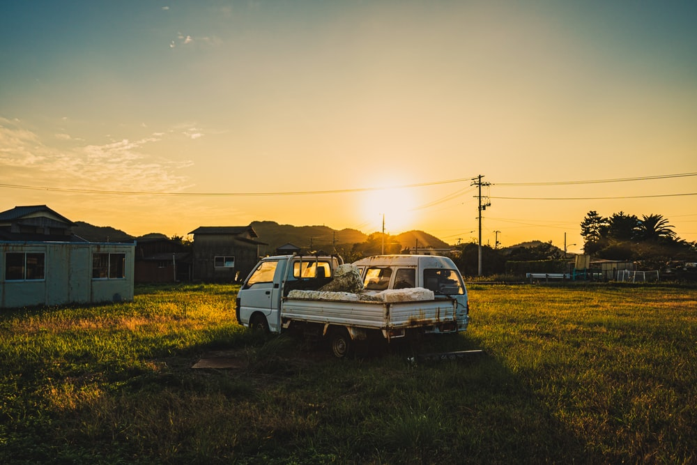 white and black car on green grass field during sunset