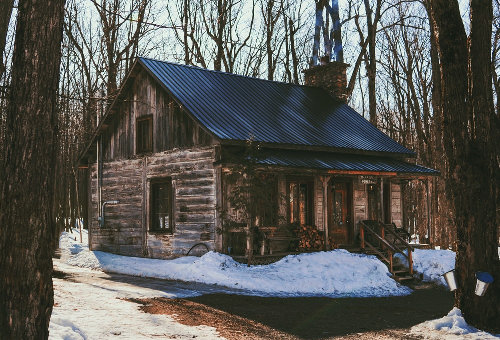 brown wooden house near bare trees during daytime