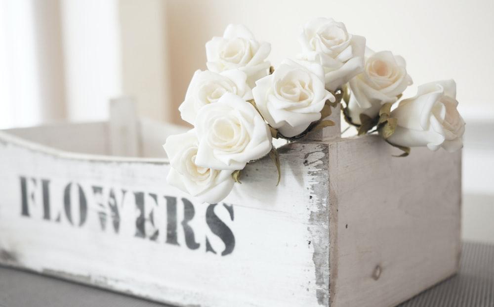 white roses on white wooden box