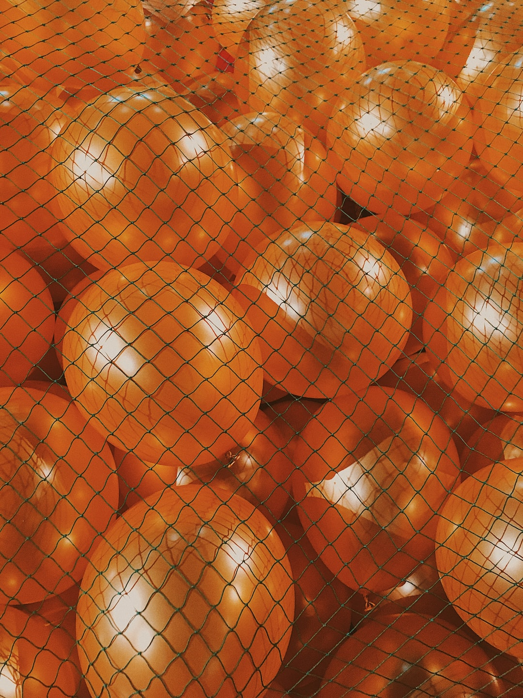 Orange ballons all together behind a green mesh.