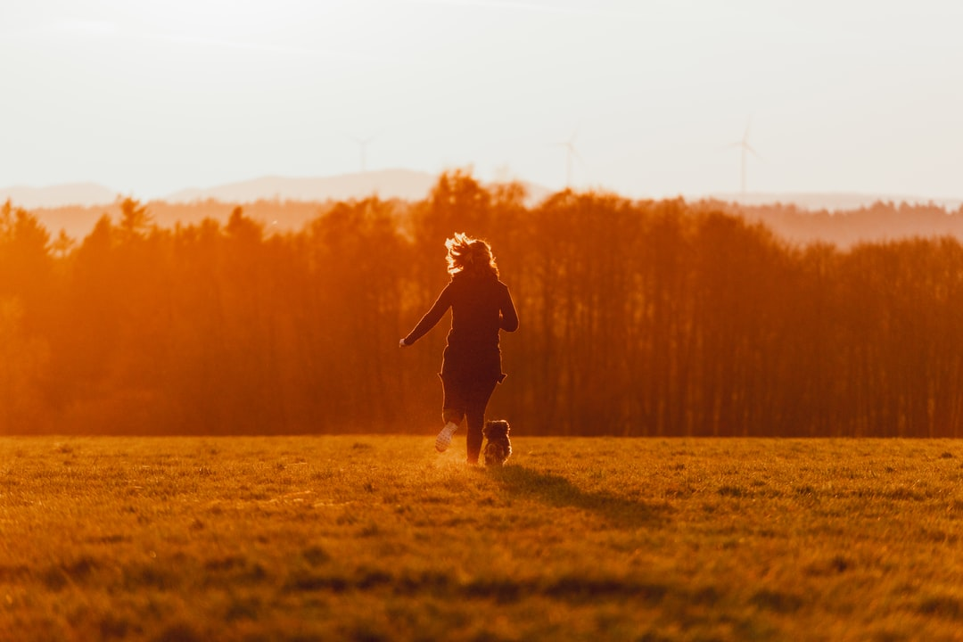 Girl and Dog Running Over the Field, Towards the Sunset - unsplash