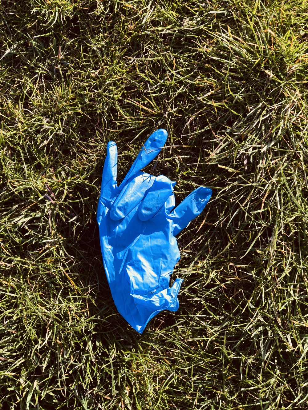 blue plastic bag on green grass