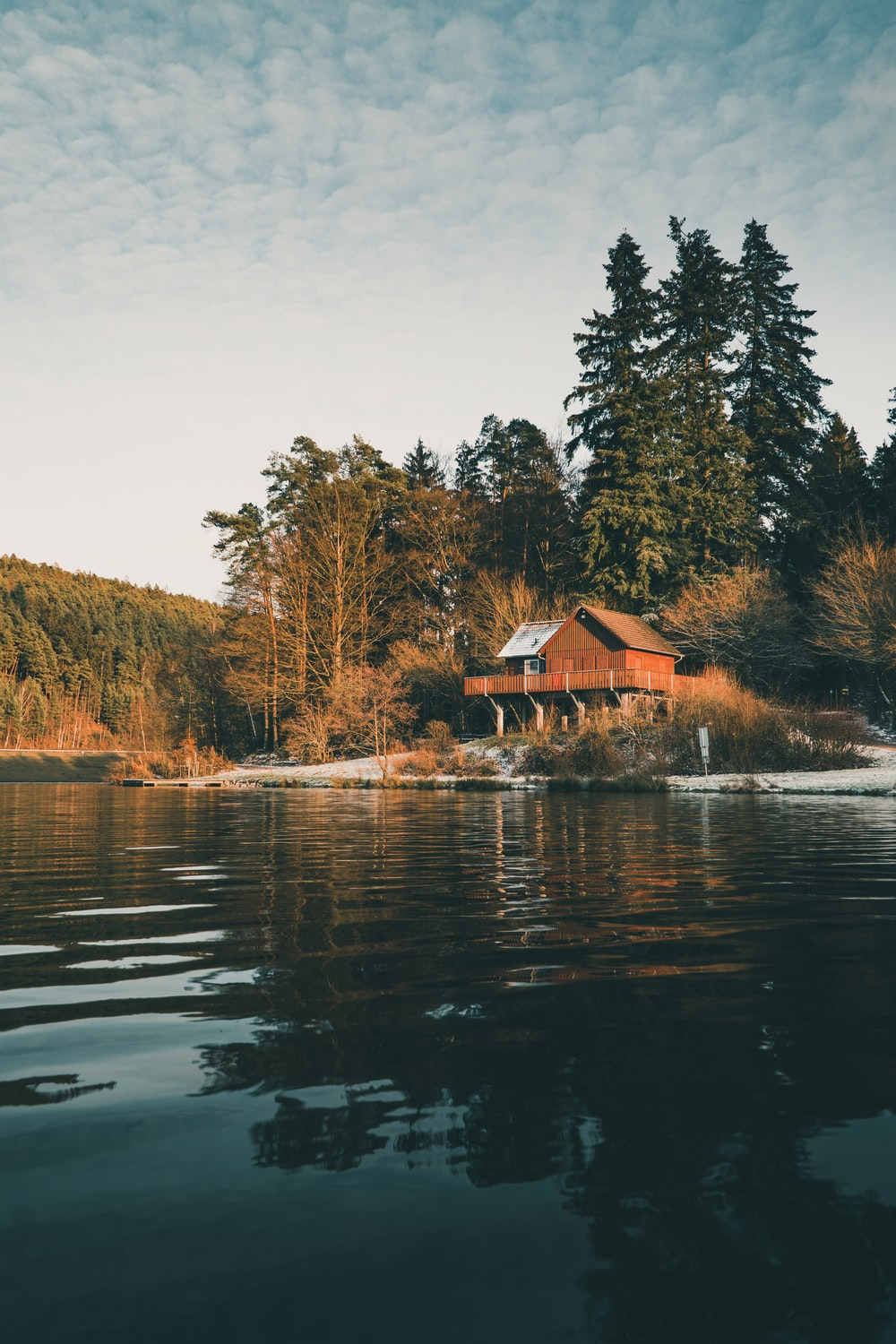 brown wooden house near lake surrounded by trees during daytime