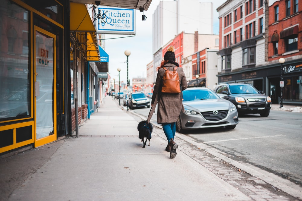 woman in brown coat walking on sidewalk with dog during daytime