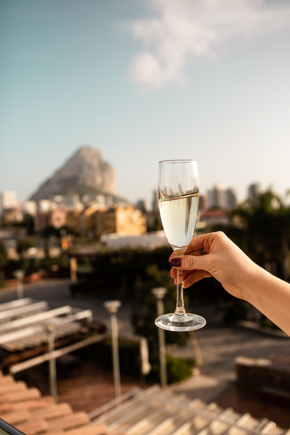 person holding clear wine glass during daytime