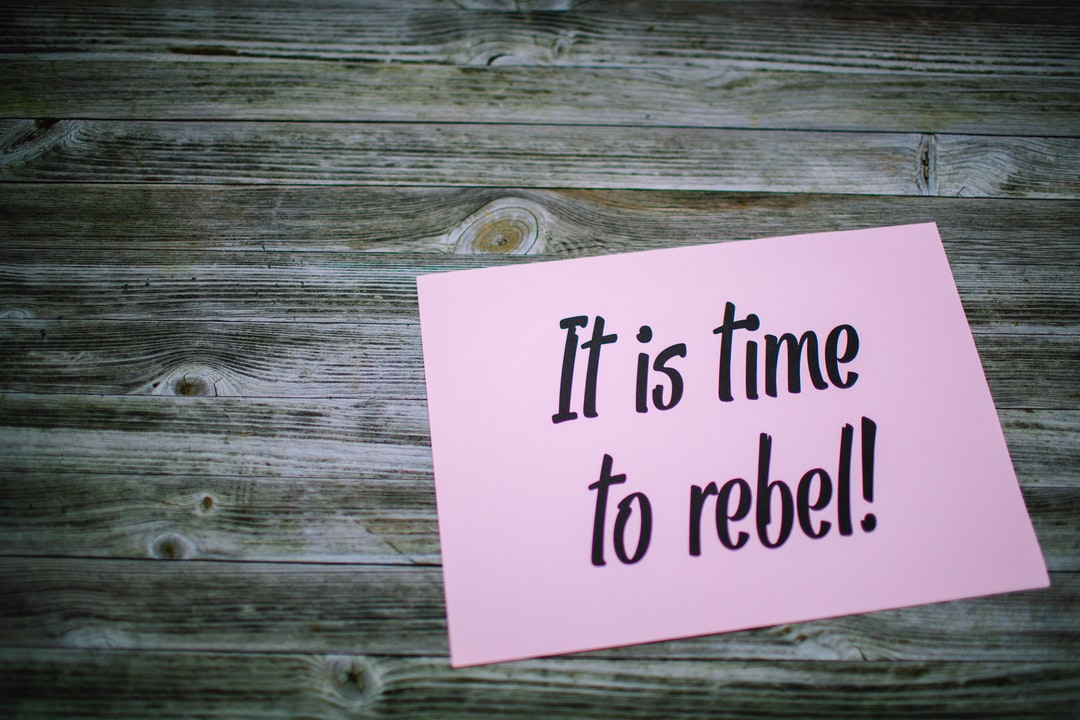 Fridays for future slogan quote –IT IS TIME TO REBEL!
