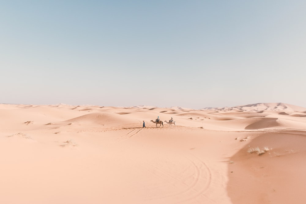 person riding camel on desert during daytime